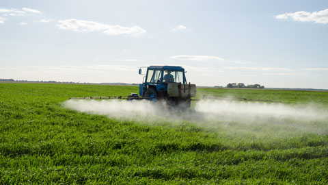 Pesticides, une évaluation déficiente !